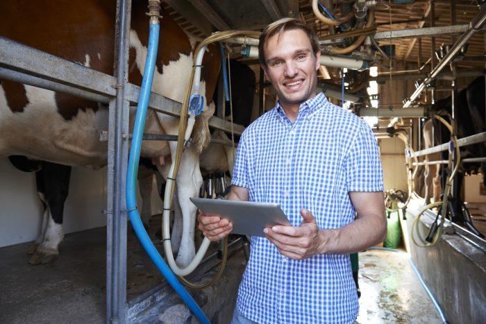 Australian Farmer Using Digital Tablet