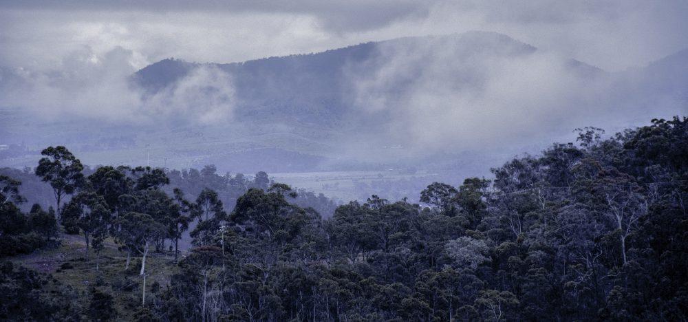 derwent valley tasmania crowdfunding campaign