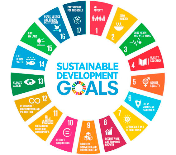 Crowdfunding for the UN Sustainable Development Goals